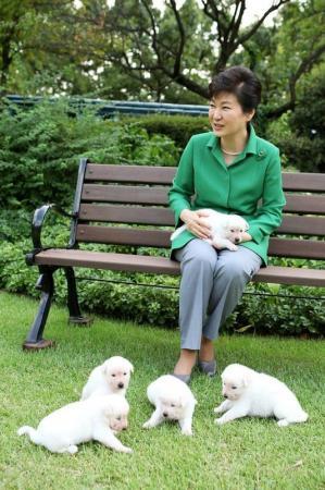 شكوى ضد رئيسة كوريا لتخليها عن كلاب