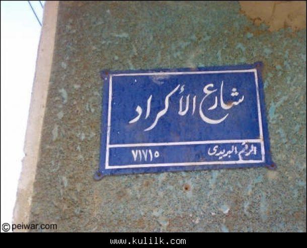 الكرد في مصر… من الأيوبيين إلى محمد علي باشا