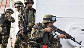 الجيش يحبط هجوماً انتحارياً في الجزائر
