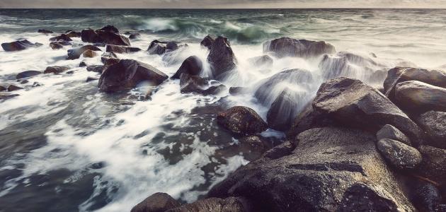 زبد البحر، سرّ الشباب والجمال
