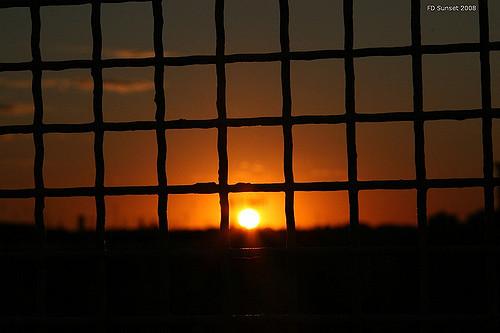 """""""القرص المربع"""": الشمس من منظار أسير"""