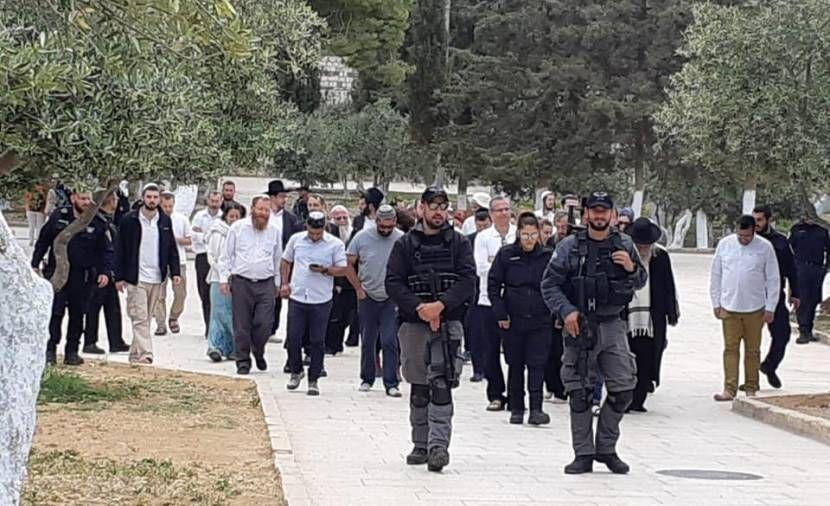 هآرتس: اتهام اليهود بعدم الولاء يحوّل ترامب من مشتبه بالعداء بالسامية إلى مدان