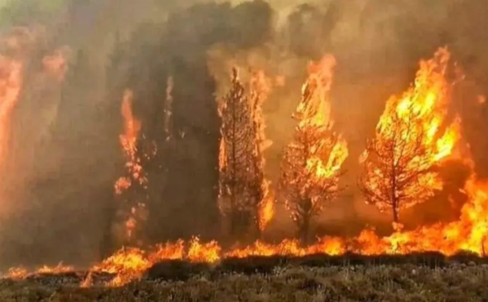 حرائق لبنان تنحسر وطائرات الهليكوبتر تواصل إخماد بعضها