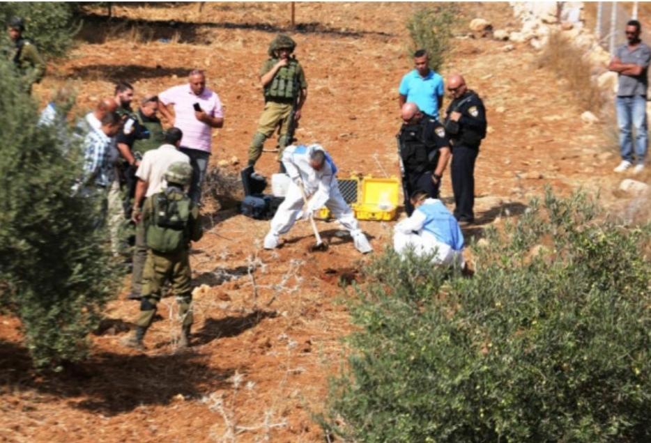 شبيبة التلال تستأنف نشاطها في مواجهات ساخنة بين المزارعين الفلسطينيين والمستوطنين