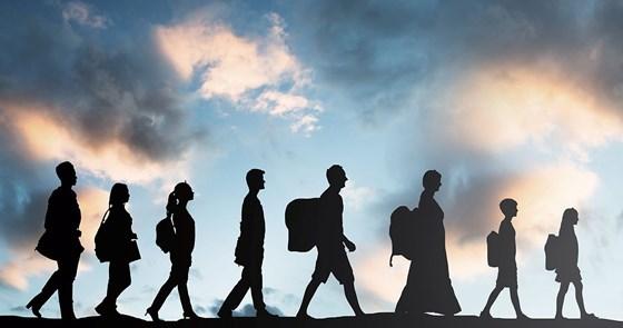 قوانين الكيمياء لحل مسألة الهجرة!