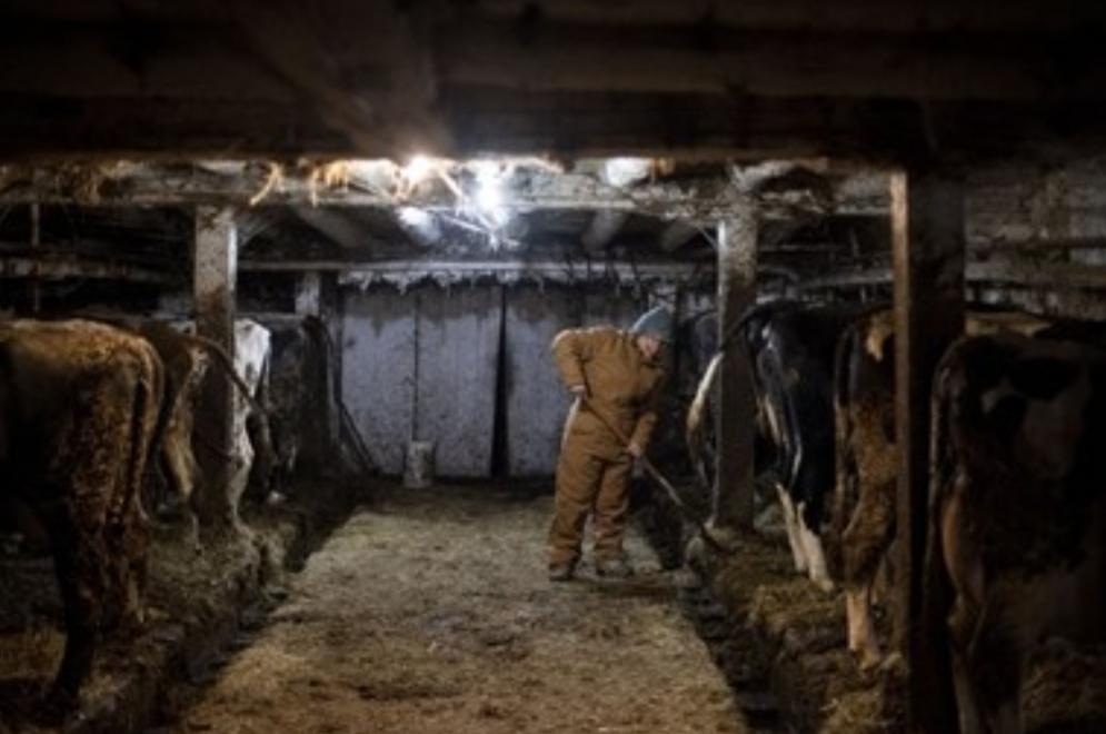 في بلاد ترامب: الفقر والعوز يصيبان المزارعين