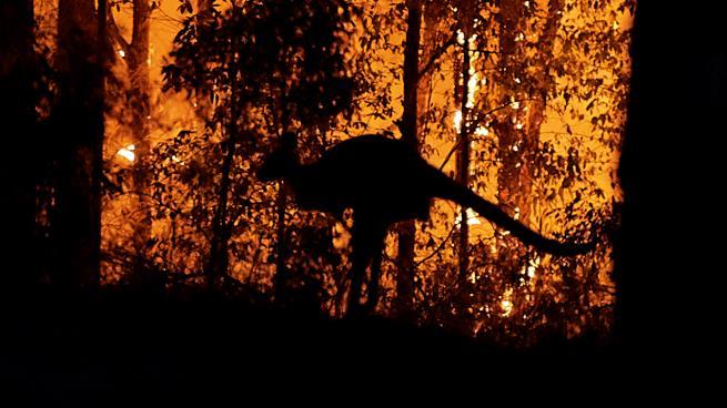 أستراليا تحث نحو ربع مليون شخص على ترك منازلهم خوفا من الحرائق