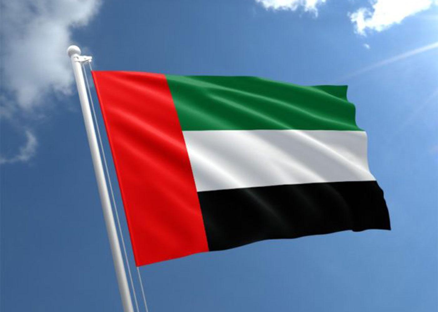 قرقاش يقول الإمارات تدعم مؤتمر برلين بشأن ليبيا