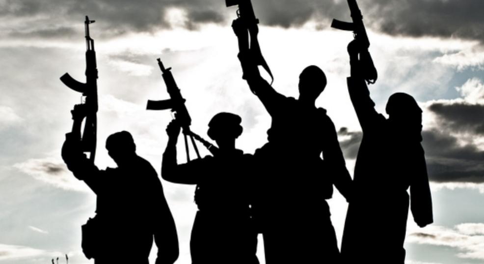 المرأة والجهاد في فقه الإسلامويين: من الإخوان المسلمين إلى داعش (ج 2)
