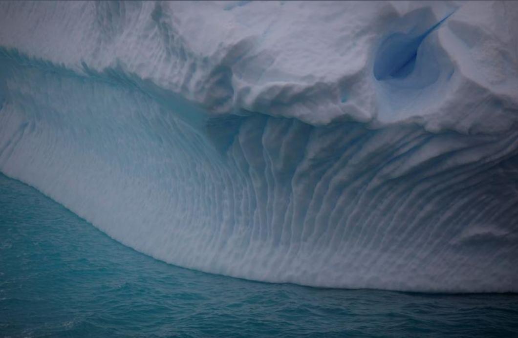 الخضار يزحف على ثلوج القارة القطبية الجنوبية بفعل تغير المناخ