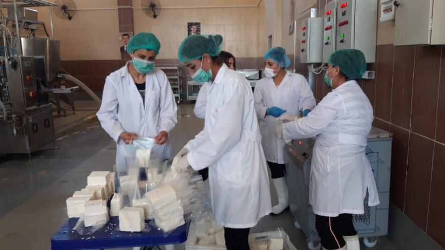 """محطة أبقار """"جب رملة"""" من أهم َمشاريع الثروة الحيوانية في سوريا"""