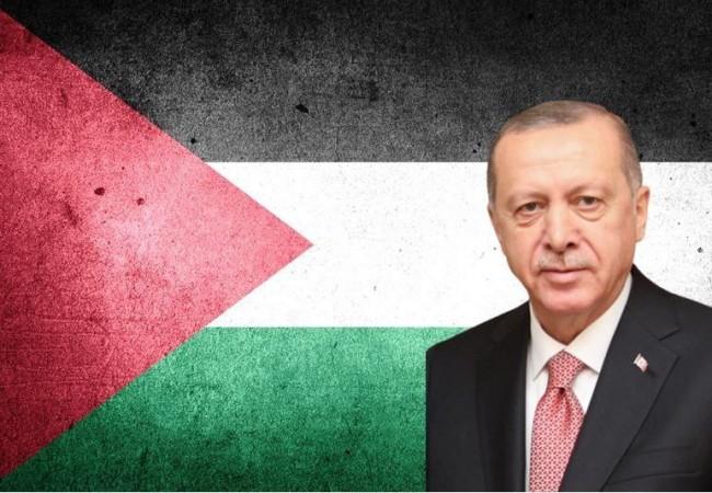 """""""مباط عال"""": حارس الأسوار من الزاوية التركية، أردوغان هو درع فلسطين؟"""